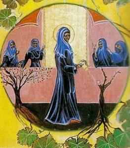 Miracle de sainte Rita : la vigne